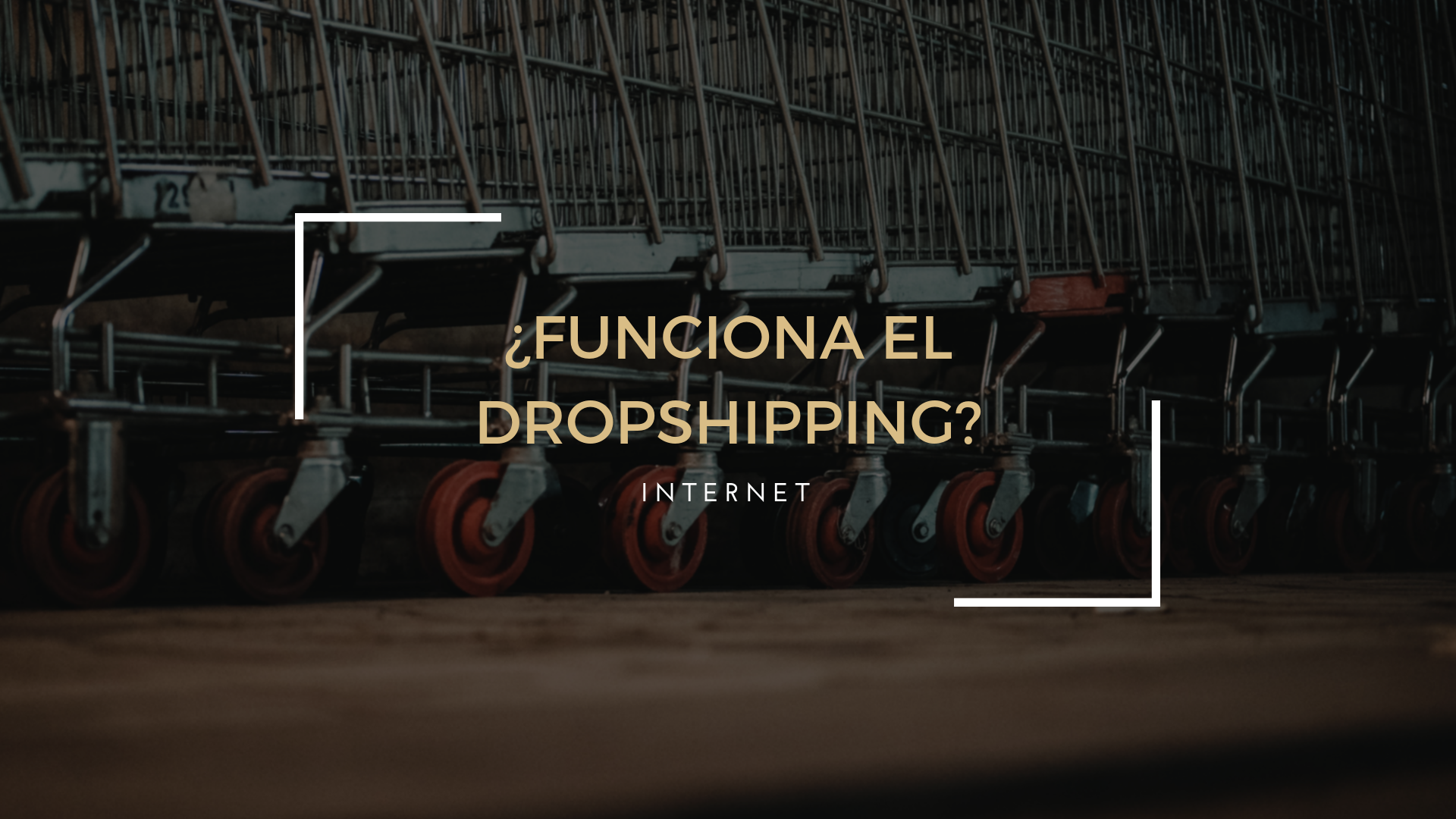 ¿Funciona el Dropshipping?